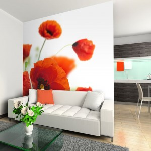Fototapeta - Poppies on the wihite background