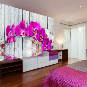 Fototapeta - Violet orchids with water reflexion